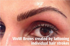 Wow Brows_2